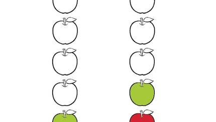 L'algorithme des fruits : exercice niveau 1