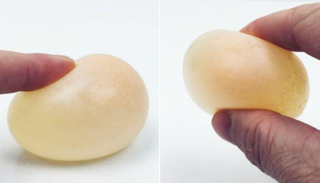 L'œuf rebondissant