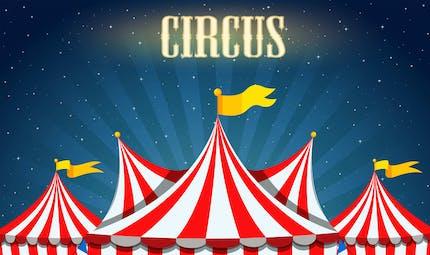 La petite histoire du cirque