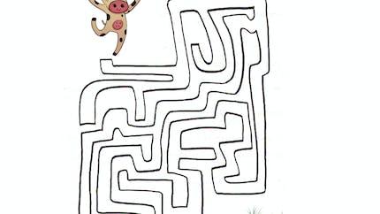 Labyrinthe de la vache