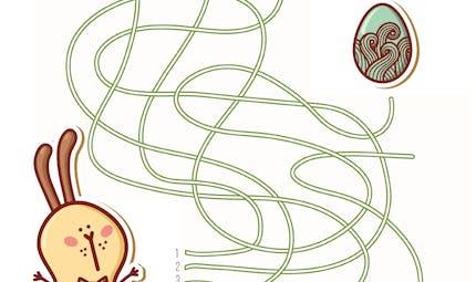 Labyrinthes et circuits