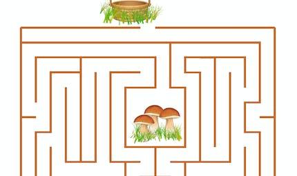 Labyrinthe de la cueillette aux champignons
