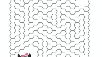 Le labyrinthe de Pimprenelle le chat