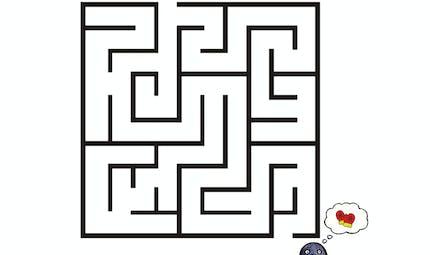 Le labyrinthe du petit pingouin frileux