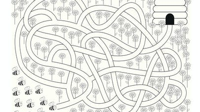 labyrinthe abeille