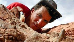 Le métier de paléontologue expliqué aux enfants
