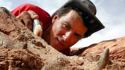 Le métier de paléontologue
