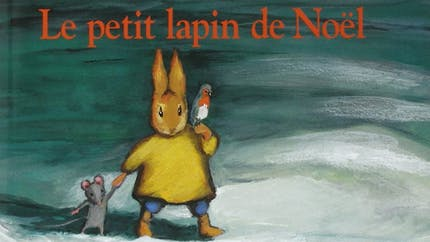 Le petit lapin de Noël