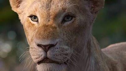 Le roi lion film live-action Disney Beyoncé est       Nala