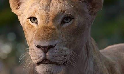 Le Roi Lion : Beyoncé se dévoile en Nala