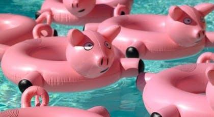 Les bouées cochons tire-bouchons