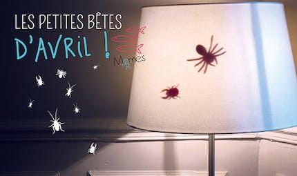 Les petites bêtes d'Avril ! (poisson d'avril !)
