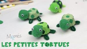 Les petites tortues en boite d'œufs