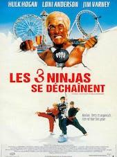 Affiche les trois ninjas