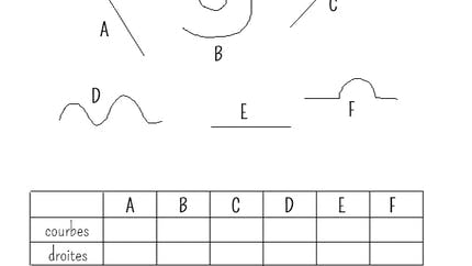 Lignes droites et lignes courbes : exercice