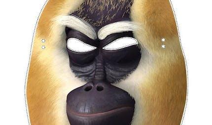 Masque de Singe Kung-Fu Panda
