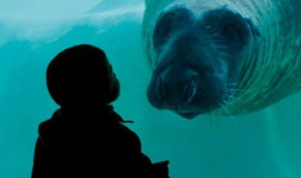 Musée de la Mer Aquarium de Biarritz