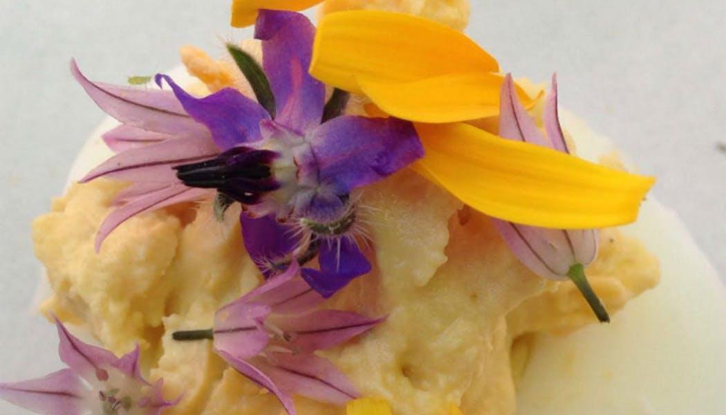 Œuf mimosa aux fleurs de ciboulette, de bourrache et       pétales de soucis