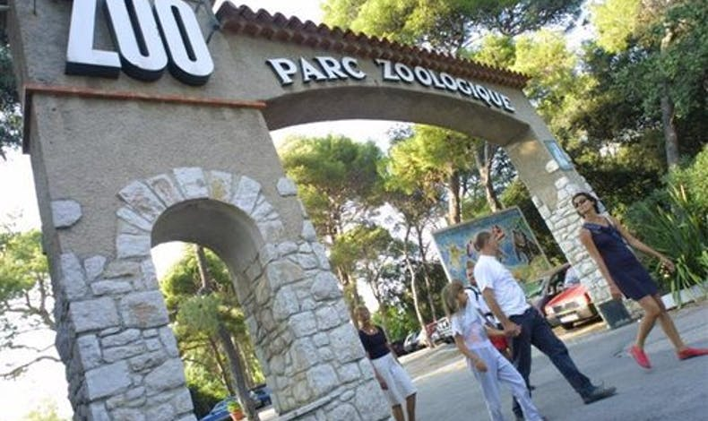 On file au zoo !