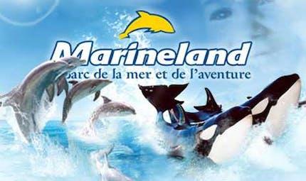 Parcs aquatique : Marineland