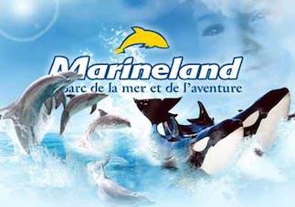 Parcs aquatique Marineland