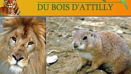 Parcs zoologique : Bois d'Attilly