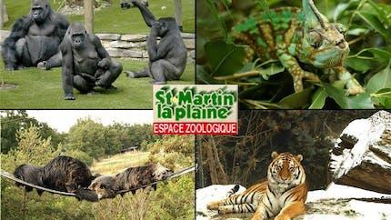 Parcs zoologique : St Martin