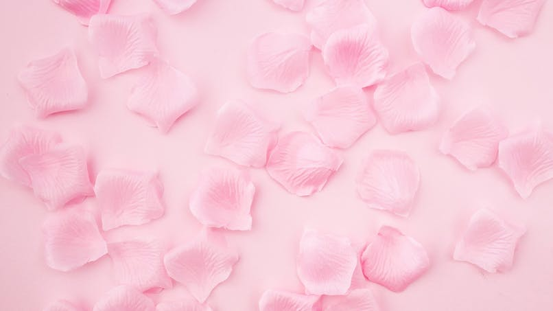 pétales de roses cristalisés