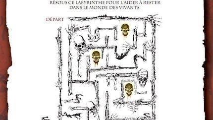 Pirates des Caraïbes : le labyrinthe