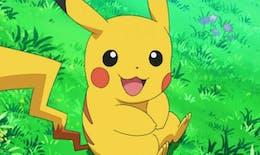 Pokémon : découvrez quel animal est en réalité Pikachu !