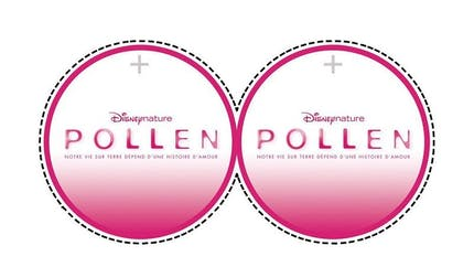 Pollen : mobile à fabriquer (3)