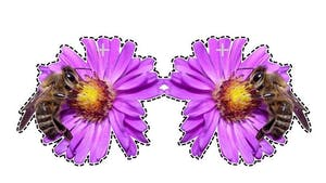 Pollen : mobile à fabriquer (6)