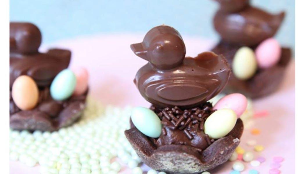 Poussin au chocolat sur son nid