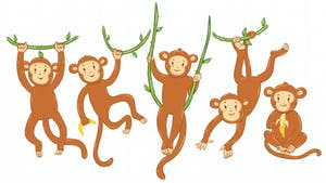 Quart de singe : règle du jeu