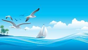 Qui peut faire de la voile sans vent
