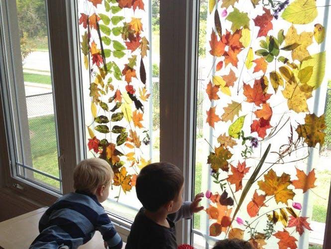 Recouvrir les vitres d'un rideau de feuilles colorées