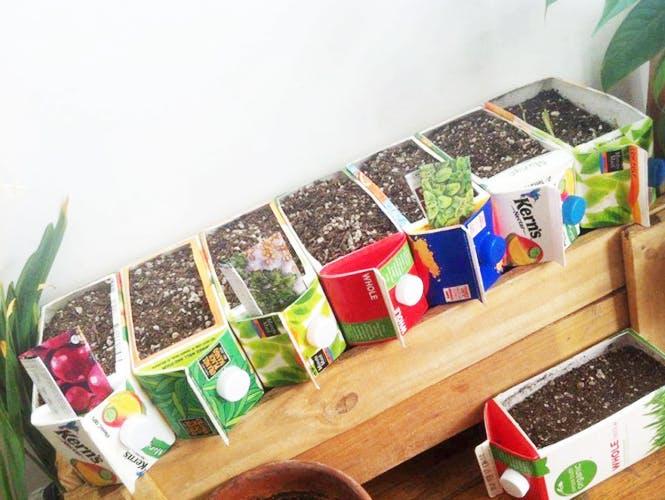 Recycler des briques de jus de fruits
