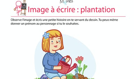 Rédaction à partir d'une image : plantation