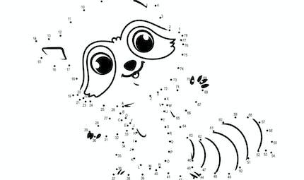 Relier les points : le raton laveur - de 1 à 78
