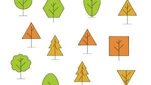 Retrouver l'image identique : les arbres
