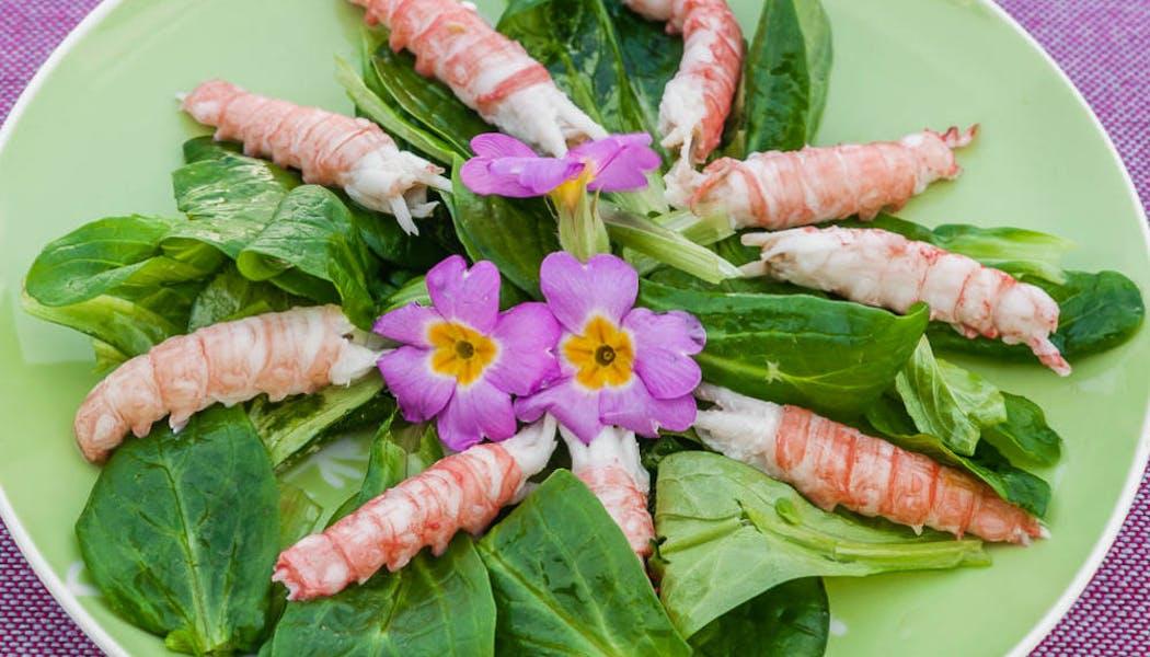 Salade de langoustines aux primevères