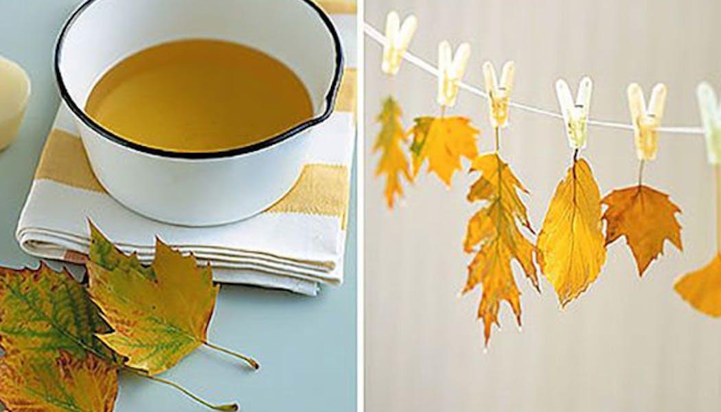 Teindre des feuilles d'arbre