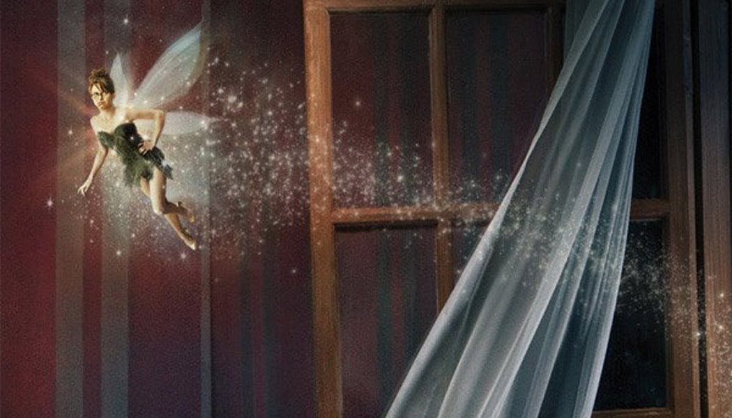 Tina Fey (La fée Clochette dans Peter Pan)