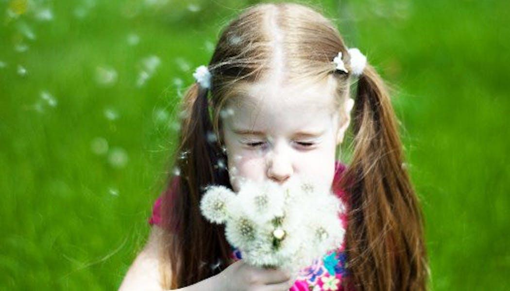 Un bouquet de fleurs pour maman