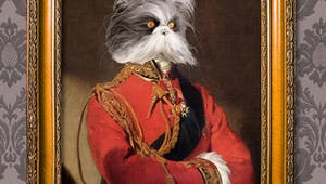 Un chef d'oeuvre de votre royal animal de compagnie !