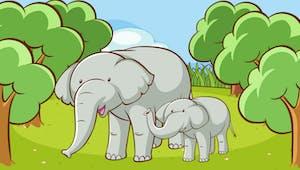 Un éléphant qui se balançait