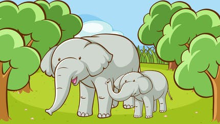 Un éléphant qui se promenait