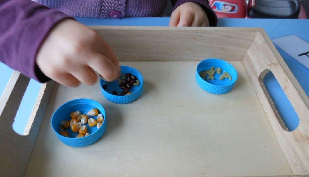 Un jeu de tri avec des graines