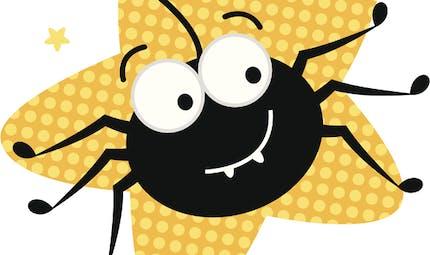Une araignée sur le plancher