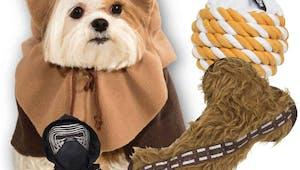 Une collection Star Wars rien que pour les animaux !